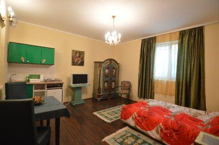 Apartman 3 | Vile Dvorac Vrdnik